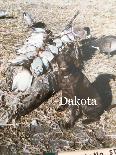 dakota25