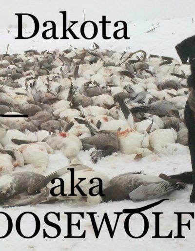 goosewolf1